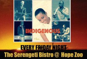 Friday Night Live Band Indigenous