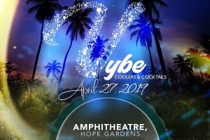 VYBE Flyer